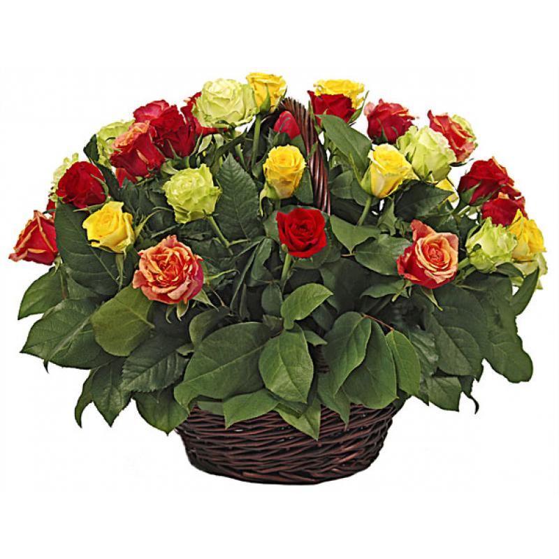 Кошница от 35 пъстроцветни рози и зеленина