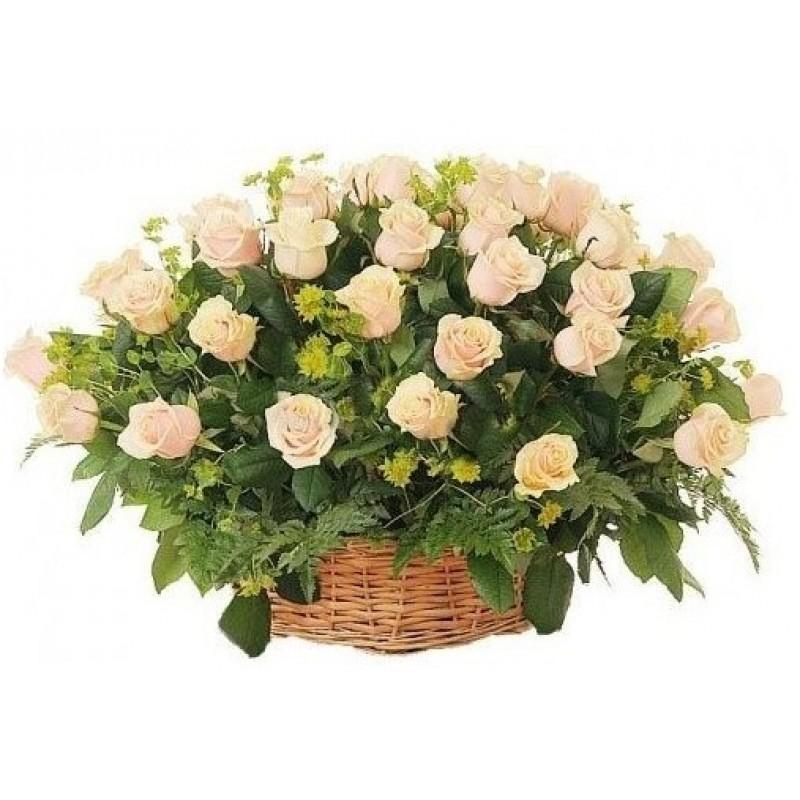 Кошница от 51 кремави рози и зеленина