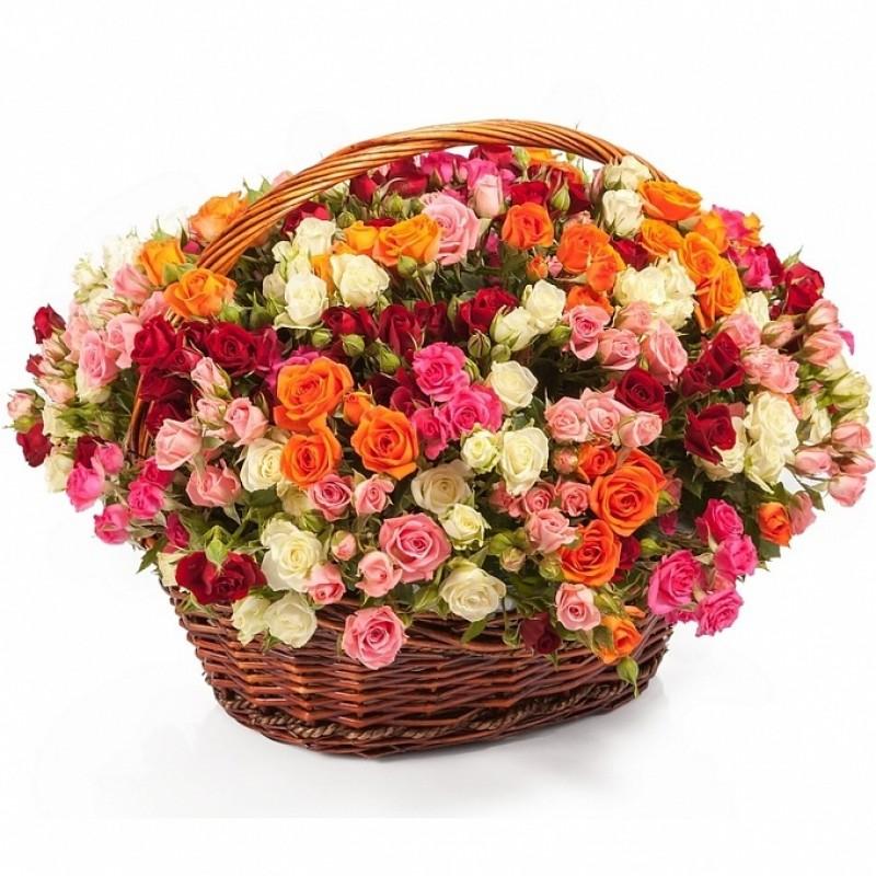 Кошница от 51 червени, бели, розови и оранжеви спрей рози