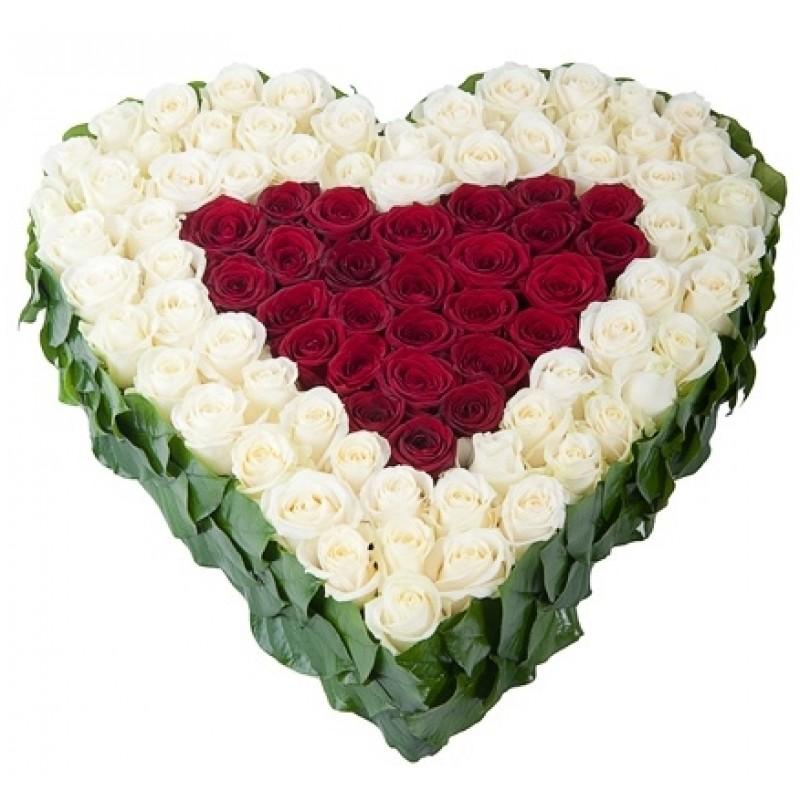 Сърце от 101 Червени и Бели Рози