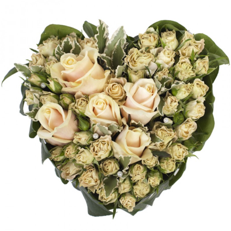 Сърце от 17 кремави и спрей рози